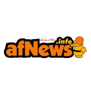 LOGO_afNews